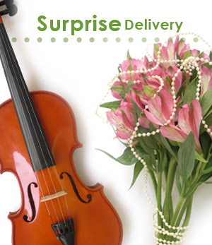 SurpriseDelivery