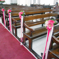 overview1_pews