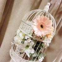 pk_arch_birdcage_cu